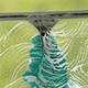 Sabrinas Atlantic Window Cleaning logo