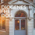 Diogenes The Dog profile image.
