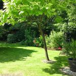 Knightingale Landscapes profile image.