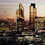 Palazzi Ltd profile image.