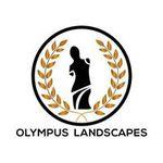 Olympus Landscapes profile image.