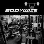 Bodywize Evolved  profile image.