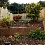 Indi tree surgery and landscaping  profile image.
