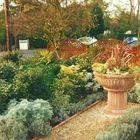 Alexander John Garden Design & Maintenance logo