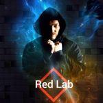 Red Lab profile image.