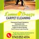 Lemon Breeze Carpet & Upholstery Cleaning logo