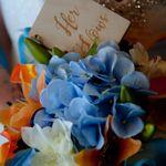 Saloli Moments Photography profile image.
