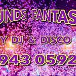Sounds Fantastic Disco Hire profile image.