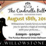 Willowstone Family Services profile image.