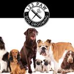 123 Paw Ltd profile image.
