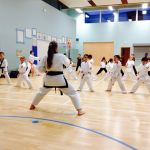 North West Tang Soo Do Association  profile image.