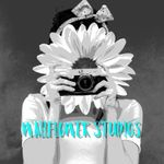 Wallflower Studios profile image.