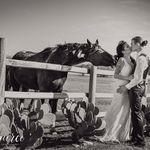 Benbrook Stables Weddings profile image.