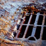 Clear drains profile image.