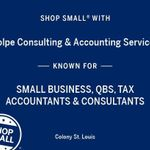 Volpe Consulting & Accounting Services profile image.