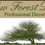 New forest decor profile image.