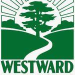 Westward Landscape profile image.