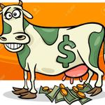 Cash Cow Internet Marketing profile image.