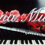 Lana Flute and Piano Lessons profile image.