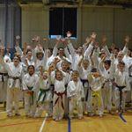 Kanshin Karate profile image.
