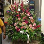 Flowers by Pouparina profile image.