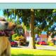 Kara's Canine capers logo