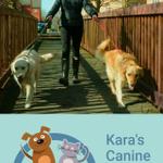 Kara's Canine capers profile image.