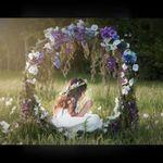 Storybook Photography profile image.