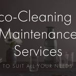 Zircon Cleaning & Maintenance Services profile image.