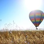 Wine Country Balloons profile image.