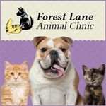 Forest Lane Animal Clinic profile image.