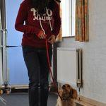 Cranbourne Dog Training School profile image.