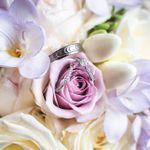 Joanne B Photography profile image.