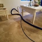 Gnicarpetcleaning profile image.
