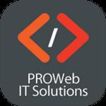 Prowebitsolutions.com profile image.