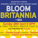 Barefoot Opera profile image.