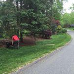 Flavio's Lawn Maintenance LLC profile image.