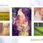 Lucid Photography profile image.