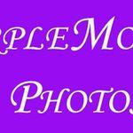 Purple Monkey Photos profile image.