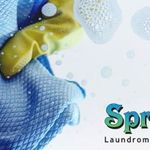 Springfresh Laundromat & Cleaning Services profile image.