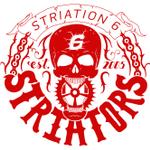 Striation 6 Fitness Centre & Sports Medicine Clinic profile image.