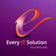 Every IT Solution INC logo