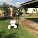 Strong and Mighty Pest Control, Cleaning and Construction profile image.