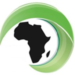 African Sport Training Academy profile image.