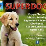 Superdogs  Training School profile image.