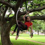 Innov8 - Gymnastics and Performance Art profile image.