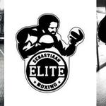 SEB's Elite Boxing profile image.