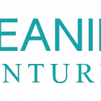 Cleaning Ventures profile image.
