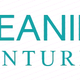 Cleaning Ventures logo