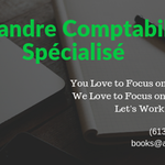 Specialized Accounting, Bookkeeping & Legal Services profile image.
